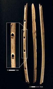 Les premiers musiciens - Hominidés | L'actu culturelle | Scoop.it