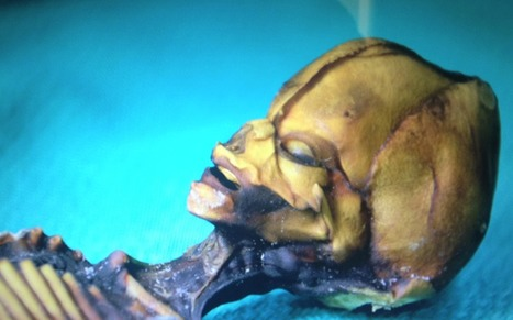 L'ADN de l' humanoïde d'Atacama a été analysé ... | Média Mieux | Scoop.it