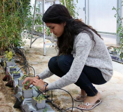 Students' green thumbs help school farm grow | CALS in the News | Scoop.it