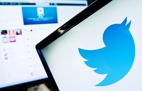 Twitter, géant menacé des réseaux sociaux | La petite revue du journaliste web | Scoop.it