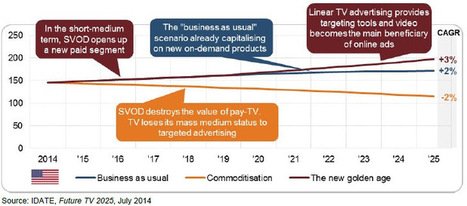 Individualised video poised to radically disrupt pay-TV | screen seriality | Scoop.it