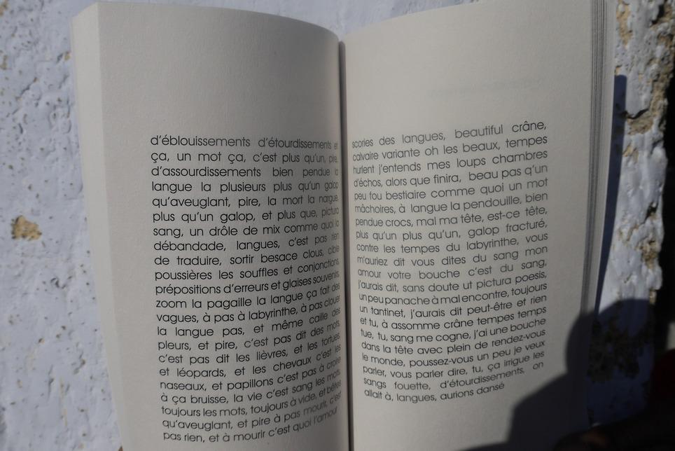 """[parution] Pré-commandes de """" A.R.N. agencement répétitif névralgique_voyou"""" de Claude Favre   Poezibao   Scoop.it"""