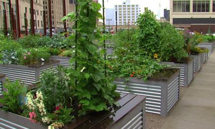 Is Farming An Answer to Detroit's Problems ? | Économie circulaire locale et résiliente pour nourrir la ville | Scoop.it