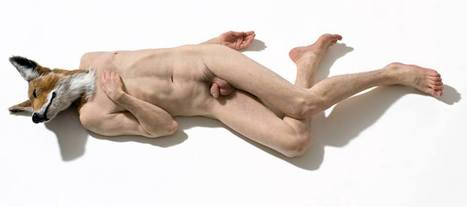 Sam Jinks: Doghead | Art Installations, Sculpture, Contemporary Art | Scoop.it