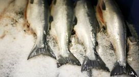 Omega-3 fatty acids tied to longer life, study finds | Longevity science | Scoop.it