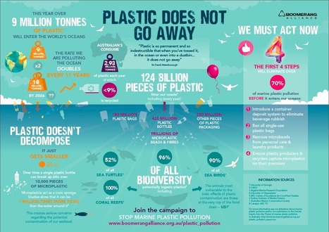 Microplastics: everything you need to know in one infographic | Primary Teaching Resources K-6 | Scoop.it