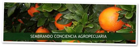 """DÍA DEL TRABAJADOR/A RURAL """"90 MIL INVITAN""""   Educampo   Sembrando Conciencia Agropecuaria   Trabajadores Rurales   Scoop.it"""