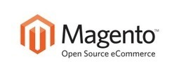 Magento Developer, Magento Expert, Magento Programmer, Magento Development Team | Gowebbaby | Learn How To Build A Successful eCommerce Website? | Scoop.it