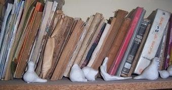 SOY BIBLIOTECARIO: Actualización de la bibliografía sobre bibliotecas indígenas en América Latina | Educacion, ecologia y TIC | Scoop.it