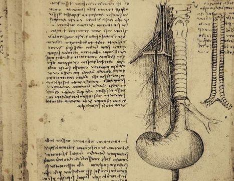 Las 5 enfermedades más antiguas de la humanidad | El cuidado de los ojos y de la visión | Scoop.it