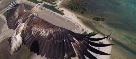 Le français Dronestagram veut prendre de la hauteur aux États-Unis | tourisme et etourisme en montagne | Scoop.it