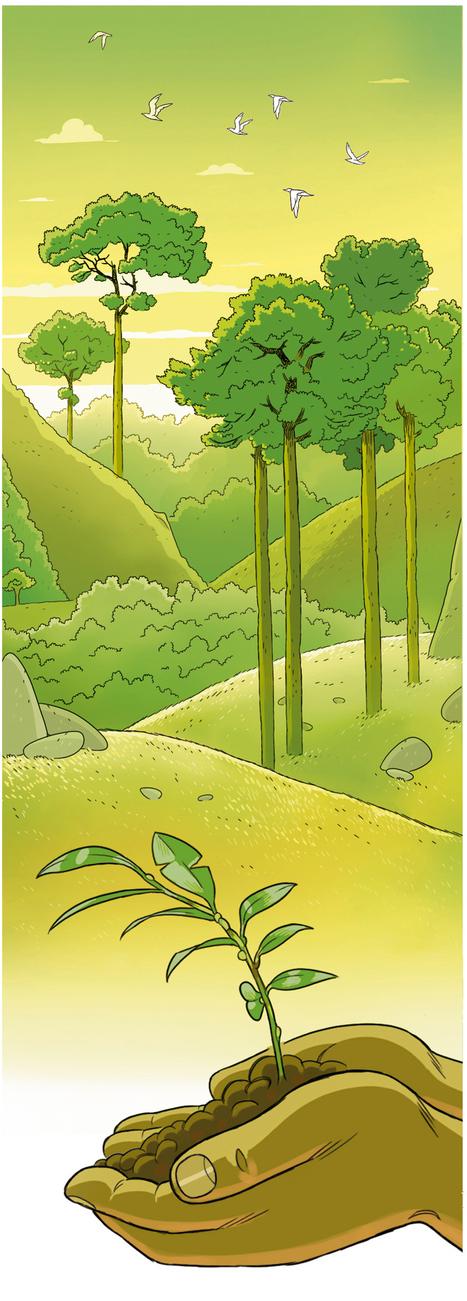 L'arbre miraculeux qui pourrait changer le monde - National Geographic | Nouveaux paradigmes | Scoop.it
