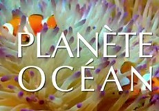 First minutes of Planète Océan | Ocean | All about nature | Scoop.it