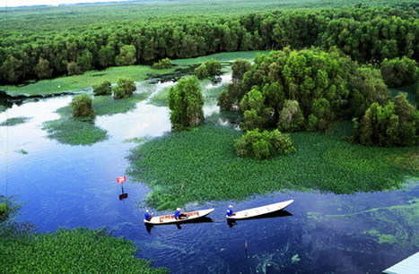 wildsingapore news: Vietnam wetland gets international status | 100 Acre Wood | Scoop.it