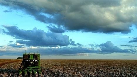 La production alimentaire mondiale au rythme brésilien | Questions de développement ... | Scoop.it