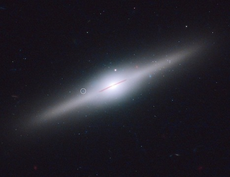Odd Black Hole Is Last Survivor of Its Galaxy | Exploring Amateur Astronomy | Scoop.it