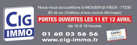 CIG Immo : agence immobilière à Dammartin-en-Goële | Immobilier Seine-et-Marne | Scoop.it