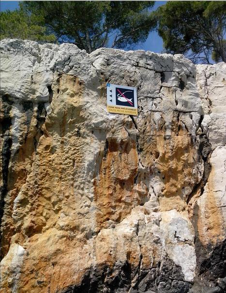 Newsletter du Parc national des Calanques - Novembre 2014 - N°9 | Parc National des Calanques, actualites et WEB TV du parc | Scoop.it