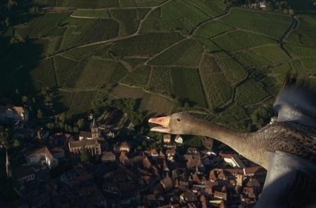 Programmes télé préférés de 2013 : Le plus beau pays du monde en tête   Tourisme en Lozère   Scoop.it