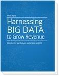 Big Data White Paper | Gigya | Business Intelligence | Scoop.it