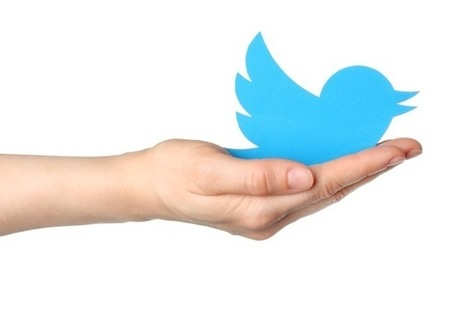 Top 5 Twitter Management Tips to Increase Your Followers Organically | Design, social media and web resources | Scoop.it