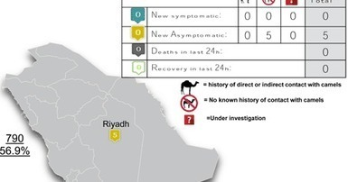 Avian Flu Diary: KSA Reports Cluster Of 5 Asymptomatic MERS-CoV Cases In Riyadh | MERS-CoV | Scoop.it