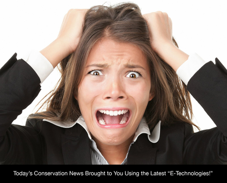 """We Are On The Cutting Edge of the Internet with """"E-News!"""" 