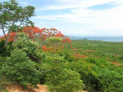 Valoriser les ressources naturelles et culturelles d'Orangéa pour un écotourisme | Madagascar Conservation News | Scoop.it