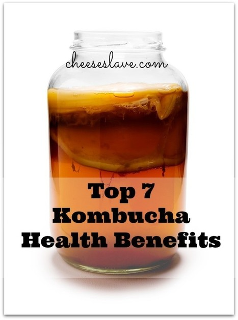 Top 7 Kombucha Health Benefits | Healthy Lifestyle | Scoop.it