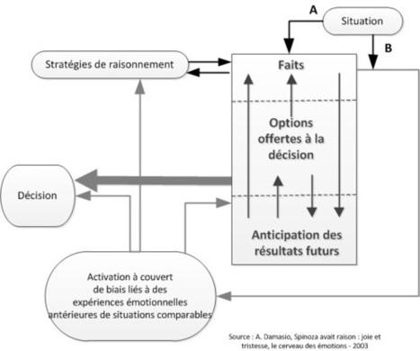 Prise de décision et émotions : l'erreur de Descartes | Accelerating innovation through transformation | Scoop.it