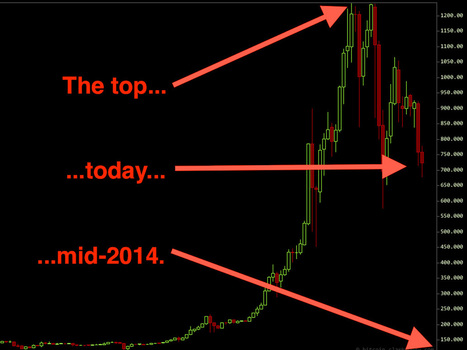 FINANCE PROFESSOR: Bitcoin Will Crash To $10 By Mid-2014 | Daily Magazine | Scoop.it