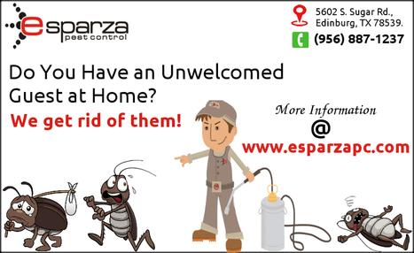 Esparza Pest Control Service in Mcallen | Esparza Pest Control | Scoop.it