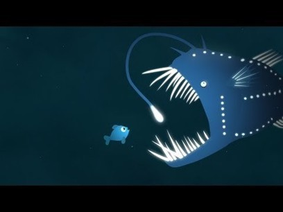 The brilliance of bioluminescence - Leslie Kenna | Curriculum Resources | Scoop.it