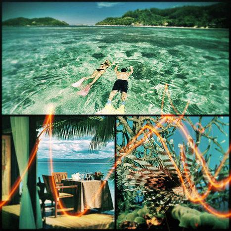 Top 3 Fiji Island resorts – A Guide   Travel   Scoop.it