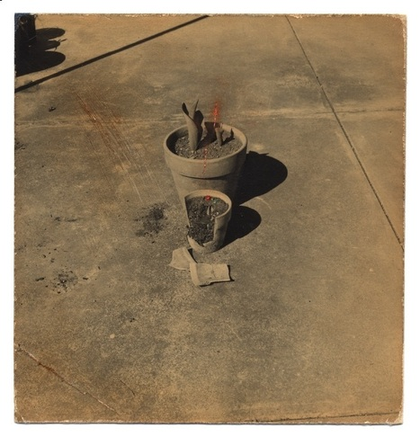 Yamamoto Masao works : photographies | Curiosités planétaires | Scoop.it
