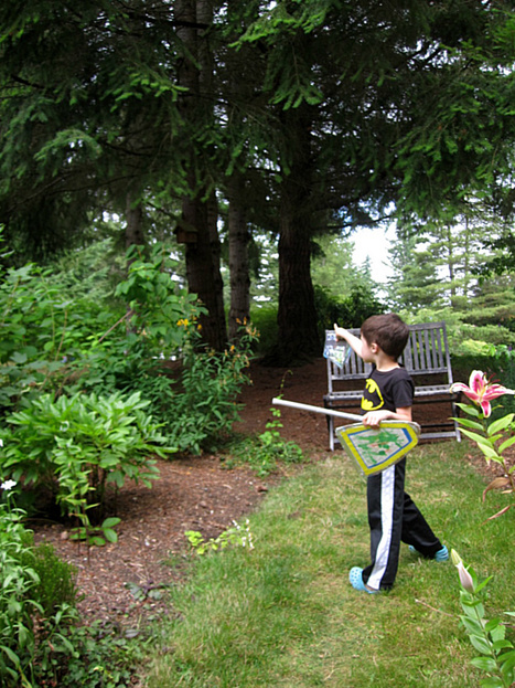 Backyard Photo Scavenger Hunt | No Time For Flash Cards | Jardim de Infância | Scoop.it