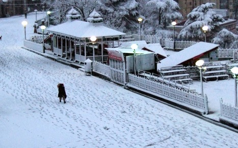 Shimla Holiday packages from Delh | Kullu Manali tour with cheap airfare | Scoop.it
