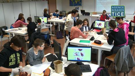 L'Agence nationale des Usages des TICE - L'utilisation des ordinateurs en classe de svt   Veille informationnelle à destination de la communauté éducative et des lycéens   Scoop.it