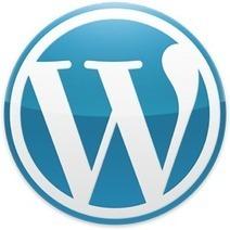 35 meilleurs plugins Wordpress incontournables | Arobasenet | Famille-joelgrave | Scoop.it