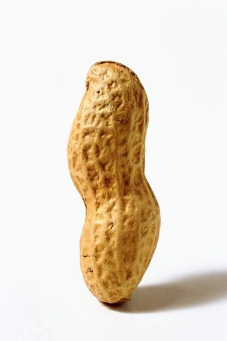 The Best Way to Treat Peanut Allergies? Eating Peanuts | enjoy yourself | Scoop.it