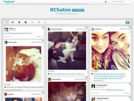 Suivi centralisé de hashtags sur les réseaux sociaux, Tagboard | Time to Learn | Scoop.it