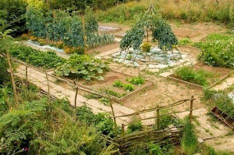 La Crau, ateliers potagers gratuits pour les enfants - telexvar | Plus de légumes et moins de béton | Scoop.it