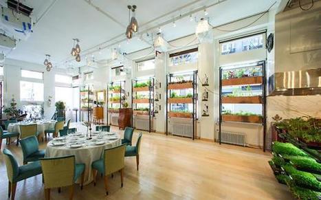 L'orto verticale? Si trova al ristorante Viaggio al «Botanical» di New York | viaggi | Scoop.it