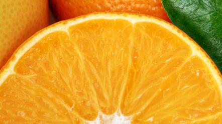 Co-Ro Food fejrer rekordoverskud | AfsætningHHX | Scoop.it