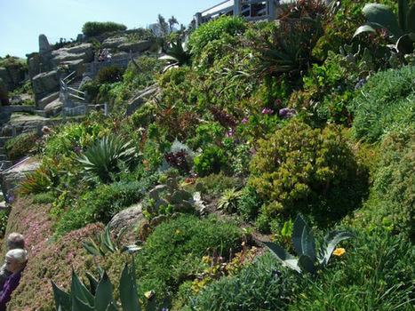 Alternative Eden Exotic Garden: The Drama of the Minack Theatre | Cool Sites I love | Scoop.it