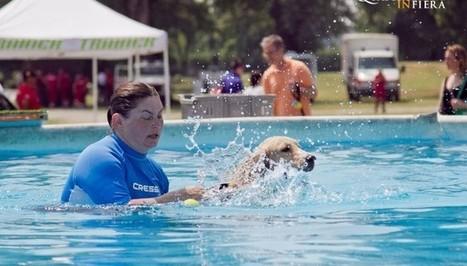 Quattrozampeinfiera, l'evento dedicato agli amici a 4 zampe - Diario Partenopeo | Dog Style | Scoop.it