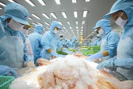 Exports down, revenue shrinks - News VietNamNet | Aquaculture Directory | Scoop.it