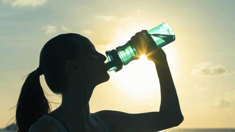 5 mitos sobre salud y alimentación que no son como te los han contado toda la vida. Noticias de Alma, Corazón, Vida   Apasionadas por la salud y lo natural   Scoop.it