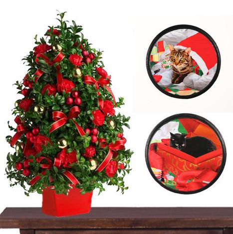Cat Christmas Wall Art Matching Set | Deborah Julian Art | Christmas Cat Ornaments and Cards | Scoop.it