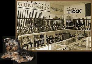 Largest Online Gun Store - Buy Firearms Online | Online Gun Shop | Scoop.it